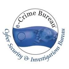 cyber e-crime